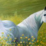 بالصور افضل تشكيلة للخيول والاحصنة والافراس العربية والاجنبية
