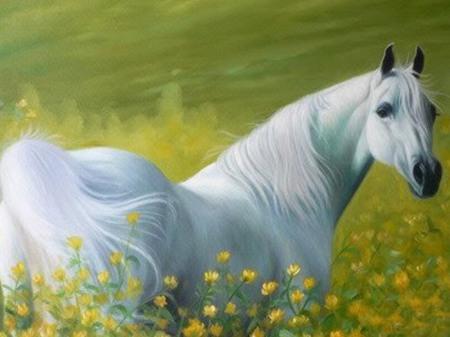 صوره بالصور افضل تشكيلة للخيول والاحصنة والافراس العربية والاجنبية