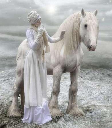 بالصور بالصور افضل تشكيلة للخيول والاحصنة والافراس العربية والاجنبية 10 1