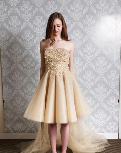 بالصور فساتين العروس انواع عجيبة وجميلة لملابس العرائس 18 58
