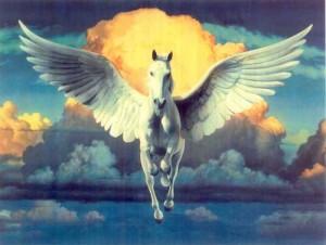 بالصور صور الحصان الطائر , احلى صور للحصان الطائر 1066 2