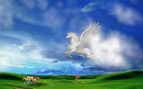 بالصور صور الحصان الطائر , احلى صور للحصان الطائر 1066 4
