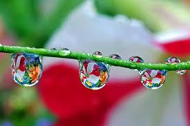 بالصور لوحات فنية رسمها المطر     ,   اجمل الصور لرسمات المطر بقطراته 1527 12
