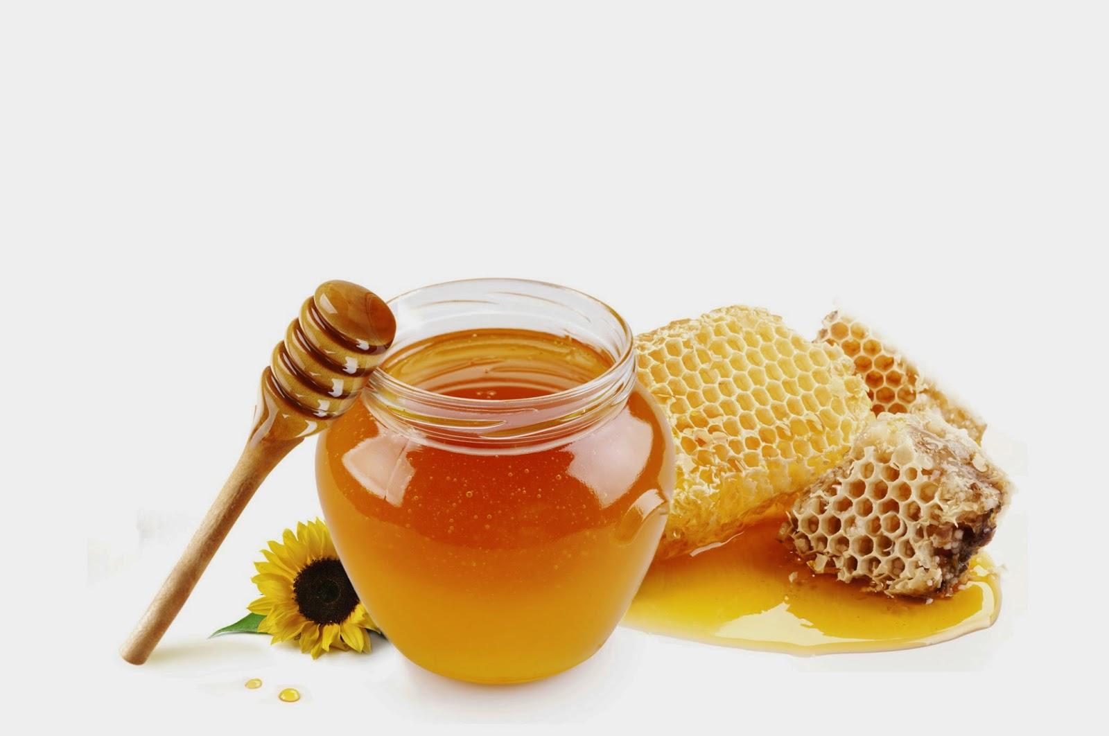 بالصور صور عسل النحل   ,   اروع الصور المميزه لعسل النحل الطبيعى 1532 10