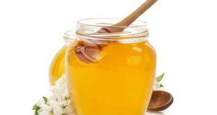 صور عسل النحل   ,   اروع الصور المميزه لعسل النحل الطبيعى