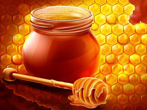 بالصور صور عسل النحل   ,   اروع الصور المميزه لعسل النحل الطبيعى 1532 2