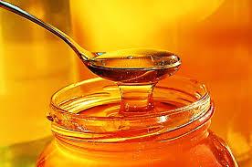 بالصور صور عسل النحل   ,   اروع الصور المميزه لعسل النحل الطبيعى 1532 4