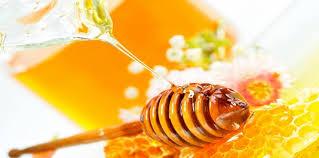 بالصور صور عسل النحل   ,   اروع الصور المميزه لعسل النحل الطبيعى 1532 7