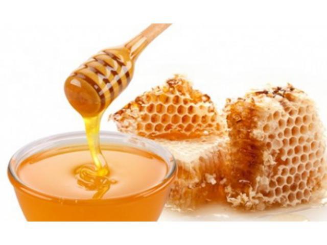 بالصور صور عسل النحل   ,   اروع الصور المميزه لعسل النحل الطبيعى 1532 8