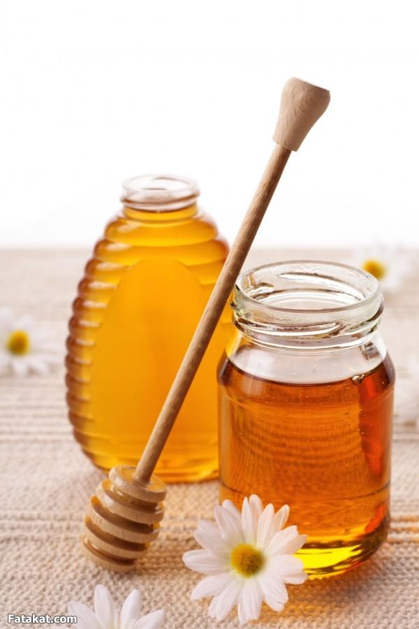 بالصور صور عسل النحل   ,   اروع الصور المميزه لعسل النحل الطبيعى 1532