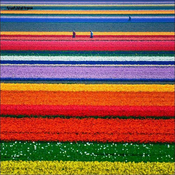 صوره اجمل المناظر الطبيعيه بالعالم , صور بجودة عالية للمناظر الطبيعية