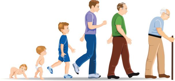 بالصور مراحل نمو الرجل ,المراحل المختلفه التى يمر بها الرجل 1590 2