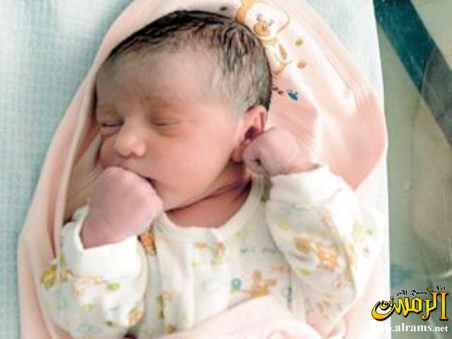 صورة صور اطفال حديثي الولادة , وقمة البراءة