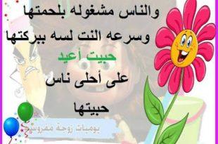 صوره صور خروف عيد الاضحى المبارك , صور بطاقات معايدة