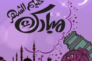 صوره شهر رمضان الذي انزل فيه القران , احدث صور للتهنئة بشهر رمضان