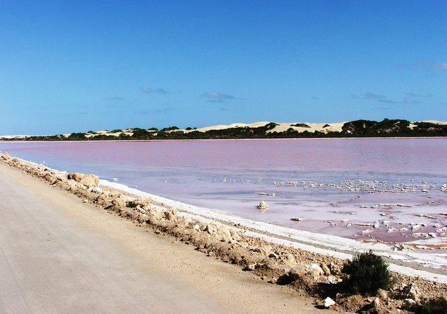 بالصور البحيره الوردية من عجائب الطبيعة 326 3
