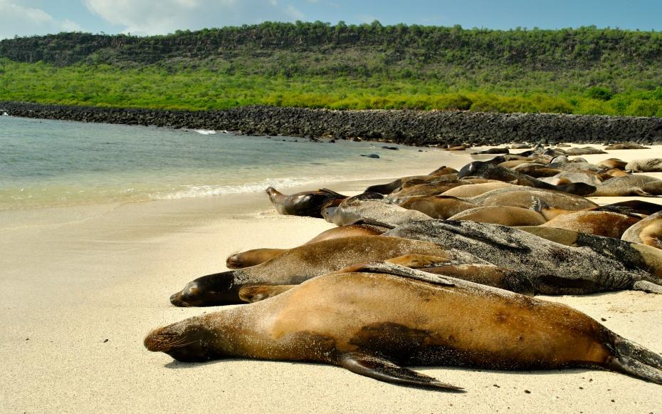 صوره افضل 10 جزر سياحية في العالم
