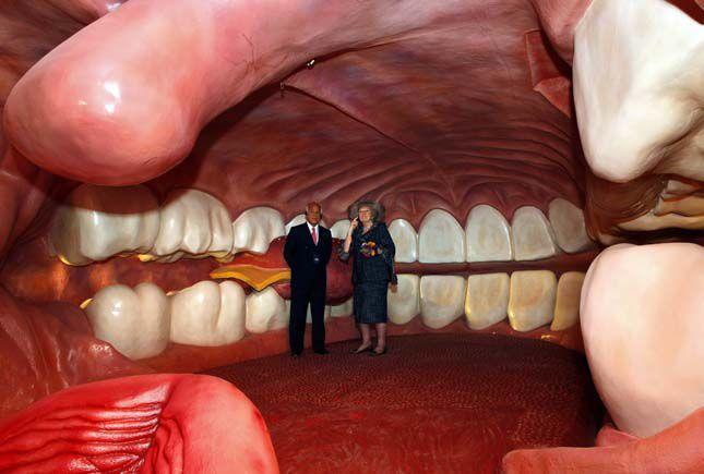 بالصور متحف جسم الانسان في هولندا 359 4