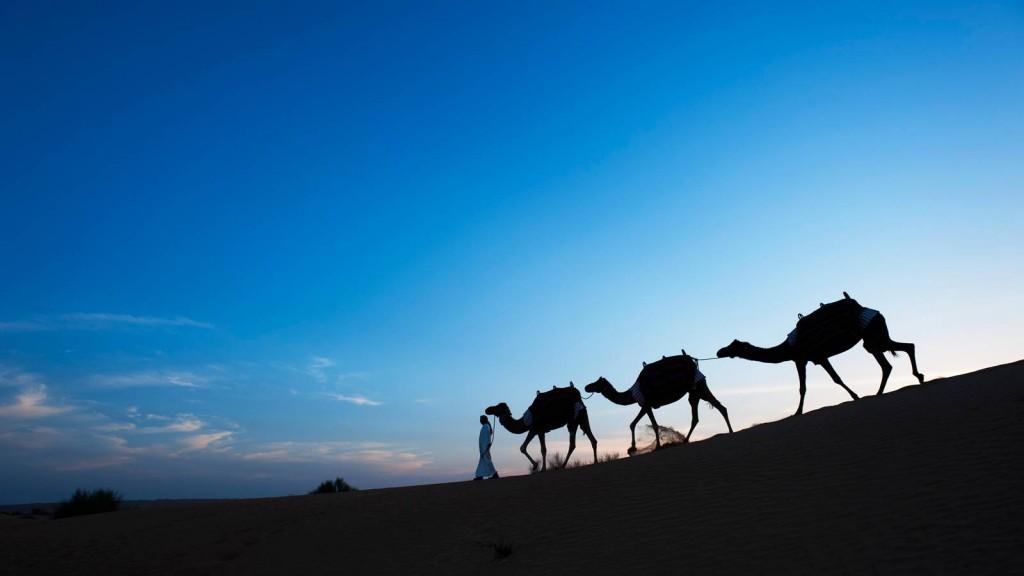 بالصور فندق في صحراء الربع الخالي 448 4