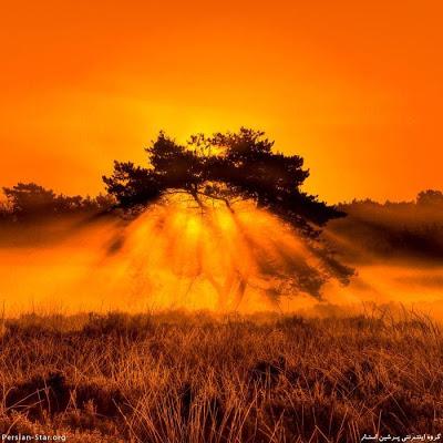 بالصور غروب الشمس في القطب الشمالي 471 4