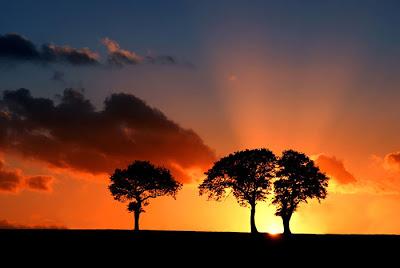 بالصور غروب الشمس في القطب الشمالي 471 5