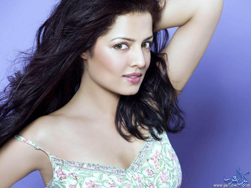 بالصور صور ملكة جمال العالم الهندية 492 14