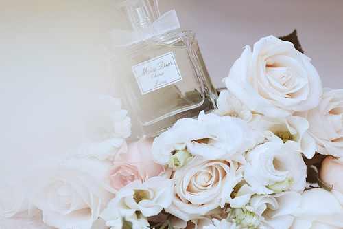 بالصور اجمل الصور الحب والرومانسية 495 17