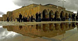 بالصور القدس عاصمة الثقافة العربية 497 16 310x165