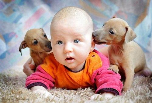 صوره صور اطفال ممتعة , اروع الصور لاطفال جنان