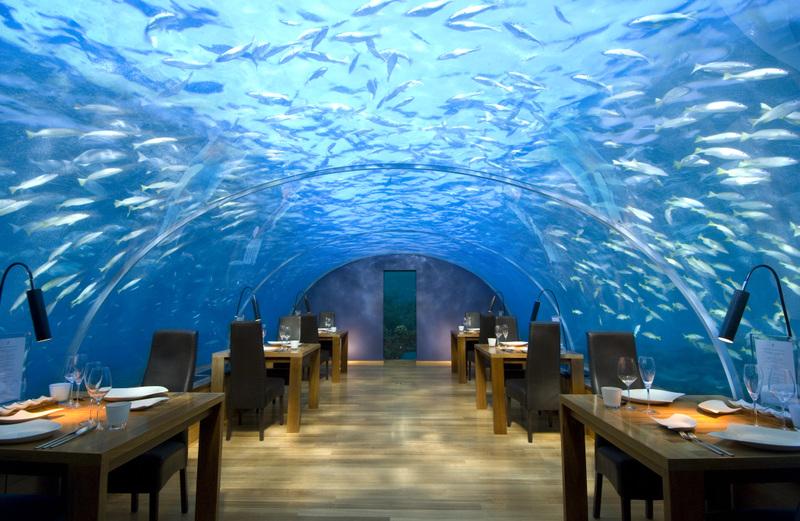 صوره مطعم زجاجي تحت اعماق البحر , مطاعم جمعت الخيال والغرابة
