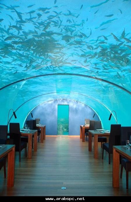صور صور قصر الملك فهد تحت الماء