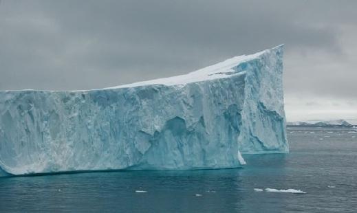 صوره الحياة في القطب المتجمد الشمالي