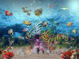 بالصور اكبر حوض اسماك في العالم , احلى انواع الاسماك 677 6