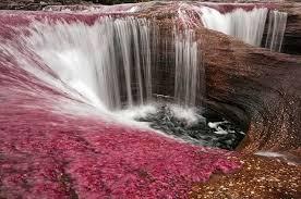 صور نهر الكريستال في كولومبيا , احلى الانهار فى العالم