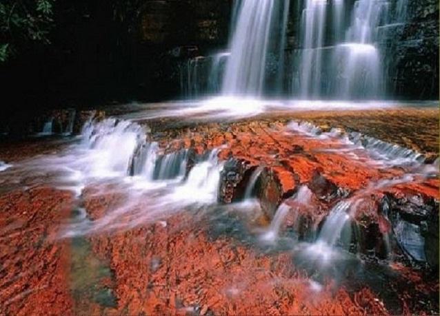 بالصور نهر الكريستال في كولومبيا , احلى الانهار فى العالم 683 2