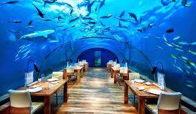 صوره مطعم تحت الماء , صور مطعم تحت الماء