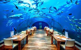 صور مطعم تحت الماء , صور مطعم تحت الماء