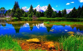 بالصور صور للطبيعه روعه,صور طبيعه جميله 967 1
