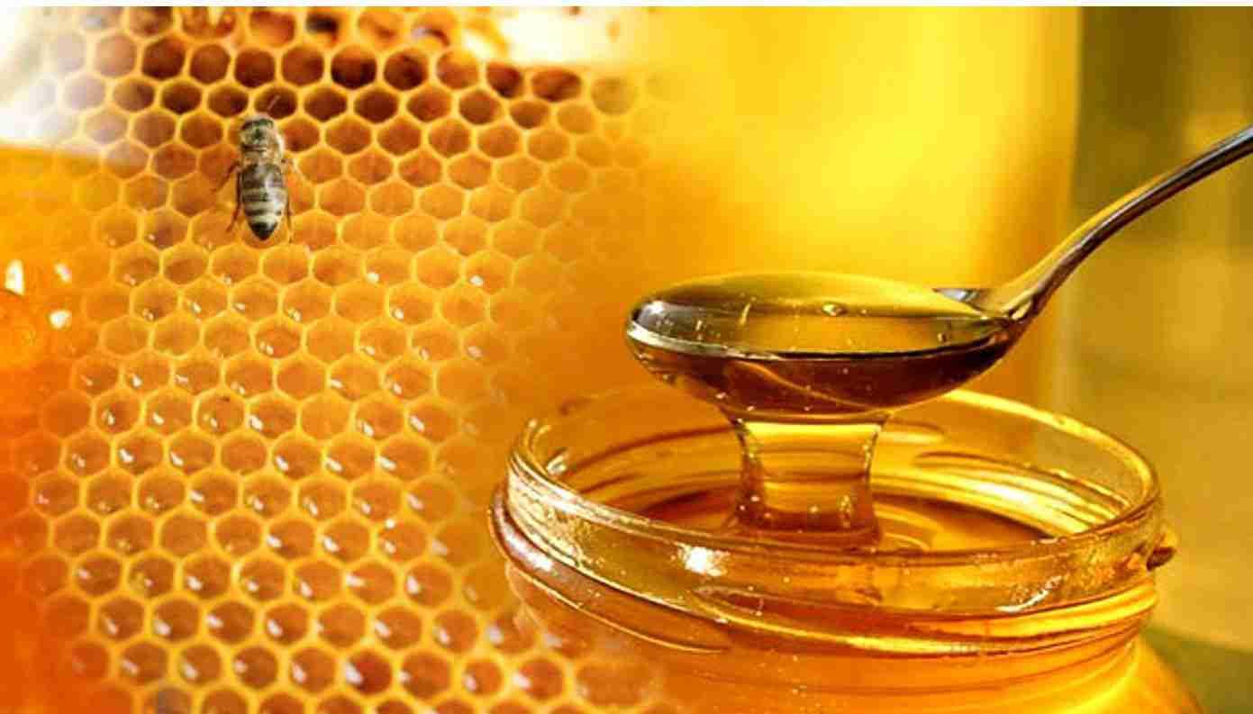 بالصور افضل عسل طبيعي    ,   صور عسل نحل نقى 1415 5