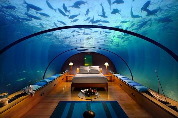 بالصور فندق اطلنتس دبي     ,    بالصور الفندق المائى الاروع اطلنتس النخله 1544 3