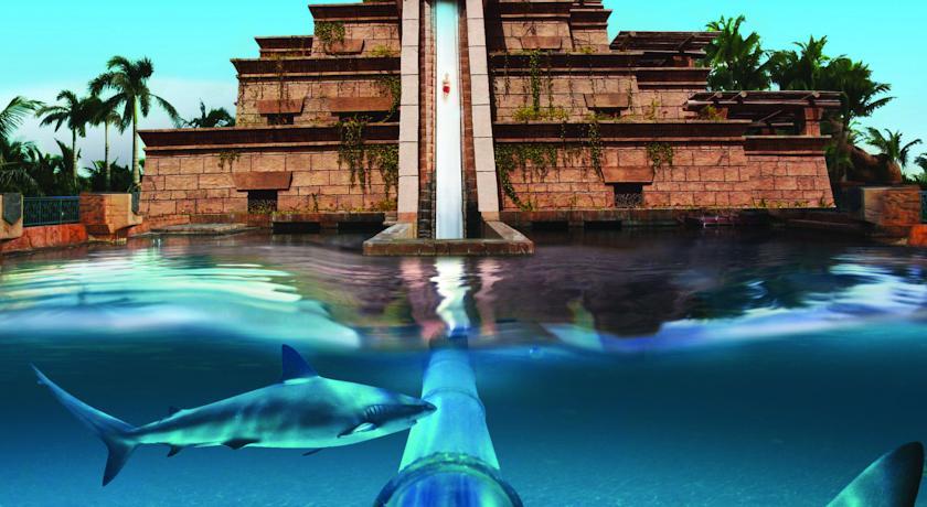 بالصور فندق اطلنتس دبي     ,    بالصور الفندق المائى الاروع اطلنتس النخله 1544 4