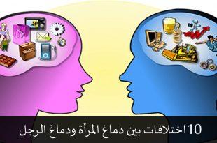 صور الفرق بين الرجل والمراة      ,    هو و هى والفرق بينهم