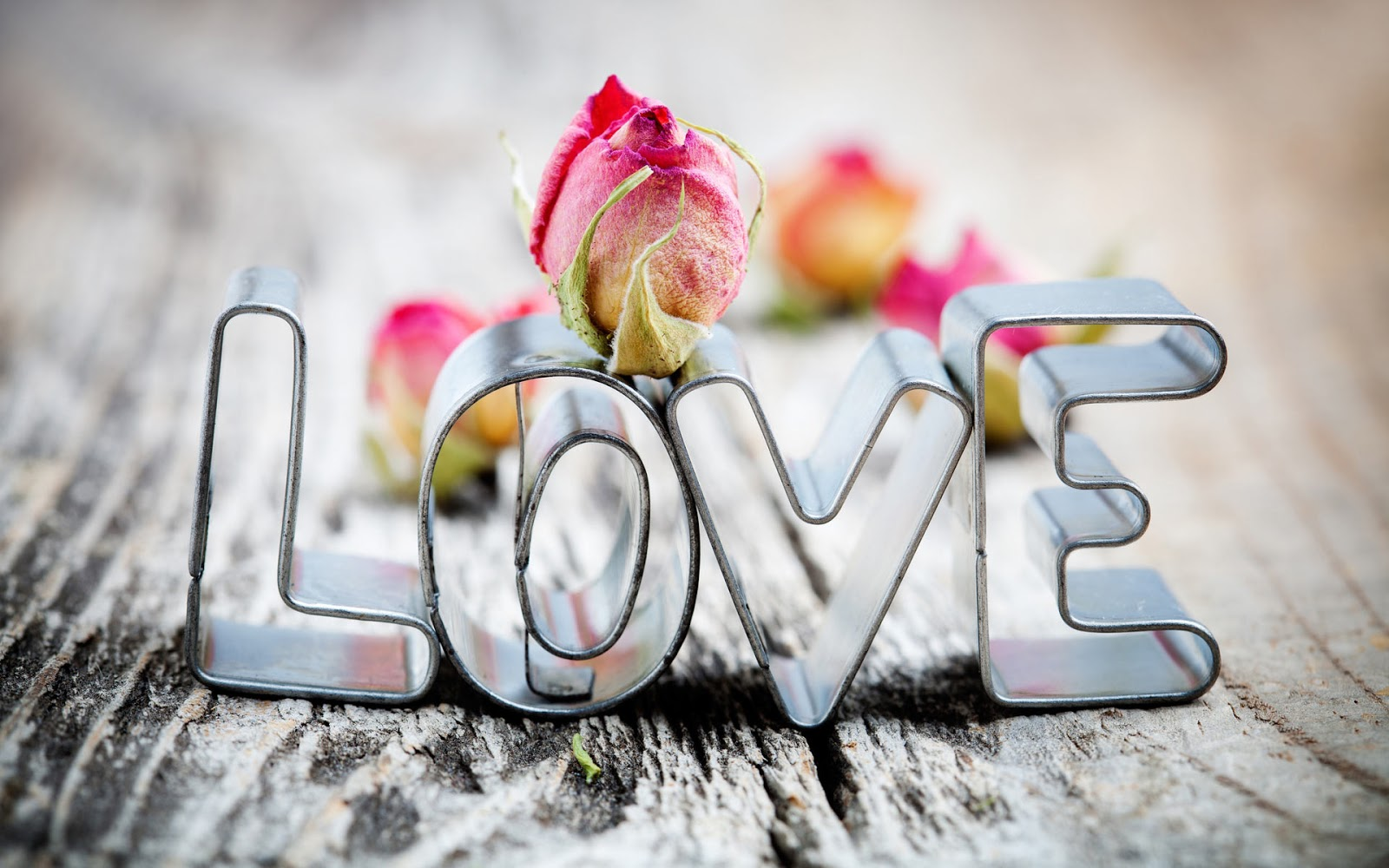 صور احلى الصور الحب فيس بوك , والرومانسية