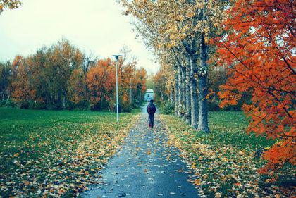 بالصور سويسرا في الخريف , وسحر الطبيعة 2030 8