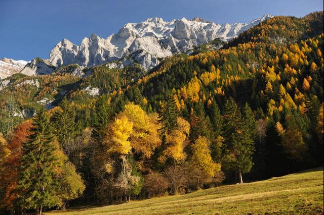 بالصور سويسرا في الخريف , وسحر الطبيعة 2030 9