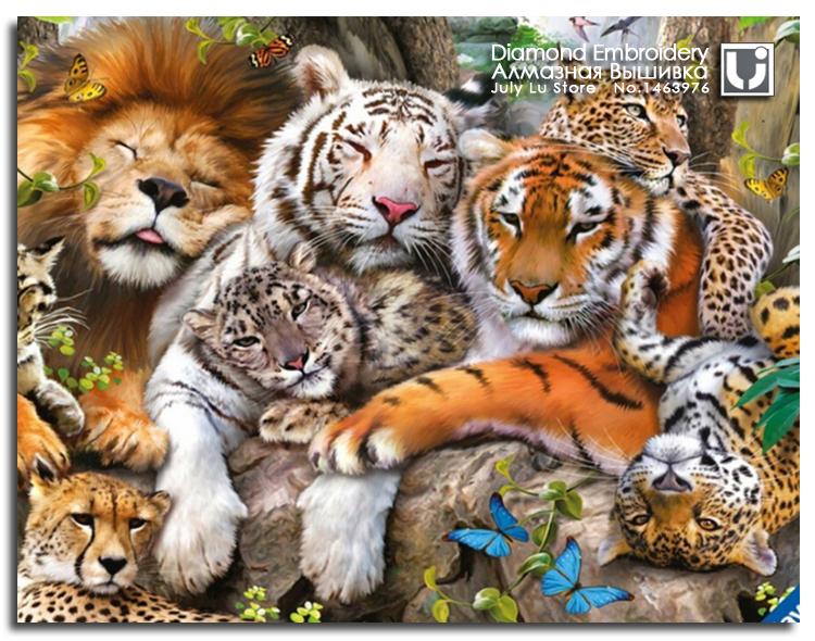 صوره كم حيوان في الصوره , دقق وجاوب