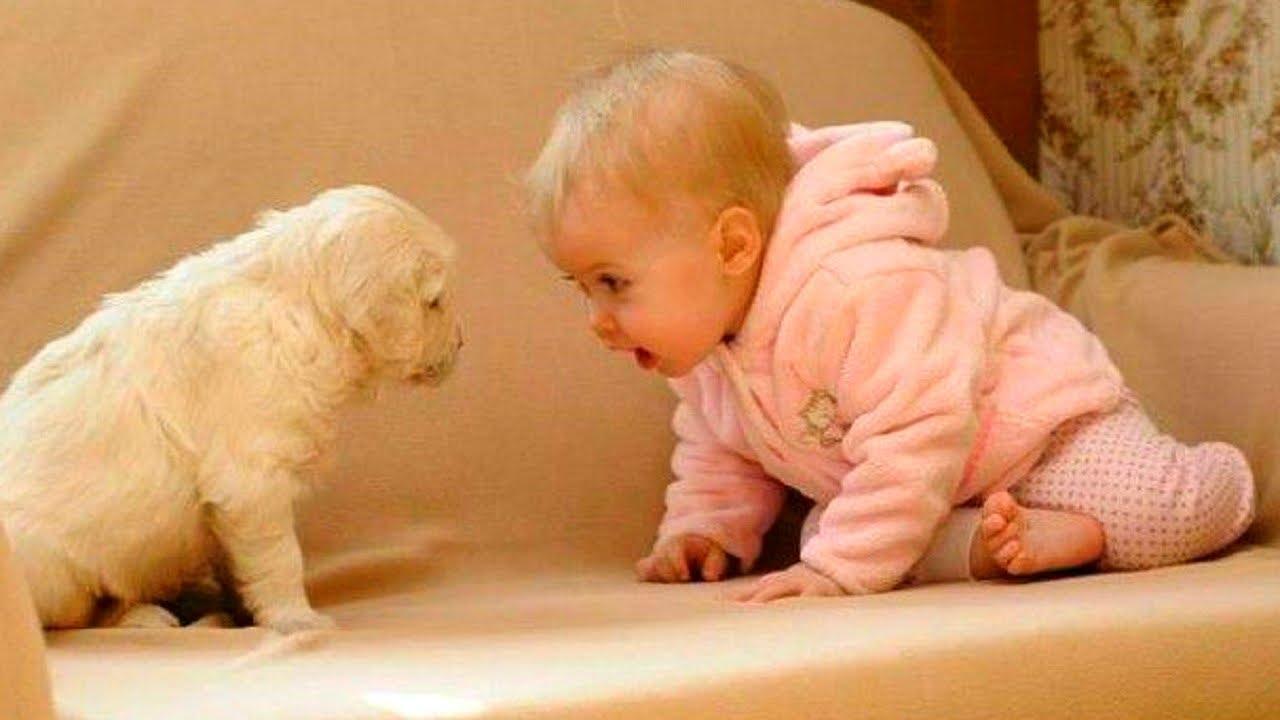 صوره اضحك مع الاطفال , وشوف البراءة