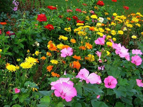 بالصور صور حدائق جميله , روعة التصميم والتنسيق 3257 11