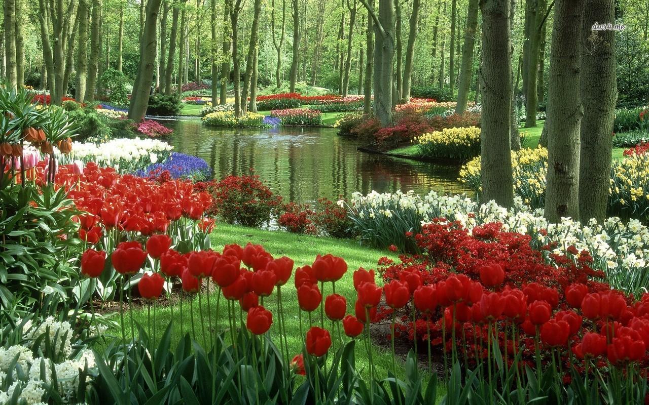 بالصور صور حدائق جميله , روعة التصميم والتنسيق 3257 3