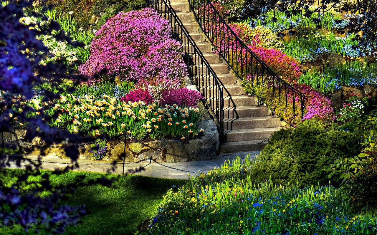 بالصور صور حدائق جميله , روعة التصميم والتنسيق 3257 4